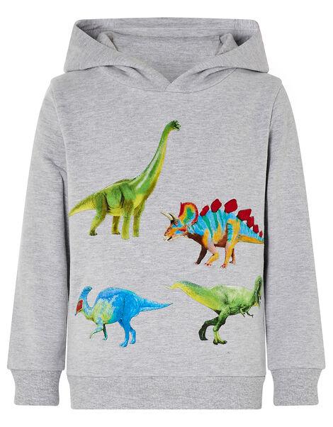 Dinosaur Print Hoody Grey, Grey (GREY), large